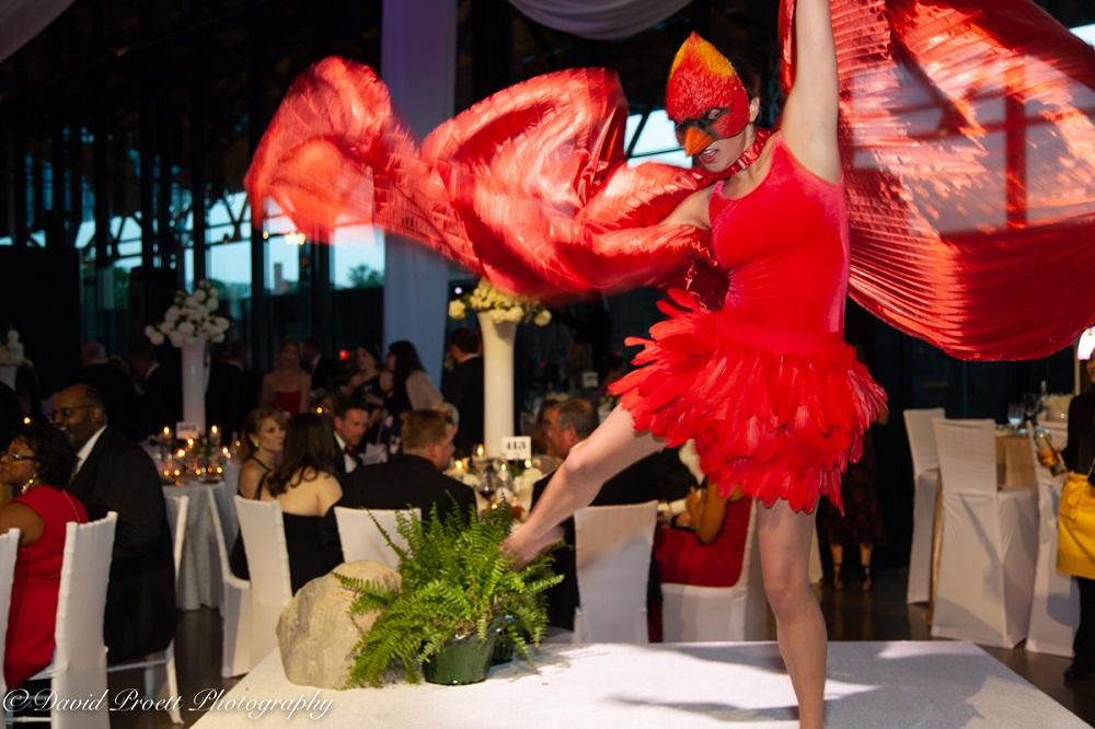 Dancer in bird costume photo